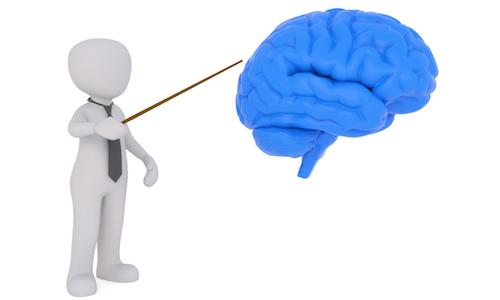 失恋で立ち直るまでの期間が男女で異なる理由を脳科学的視点から解説